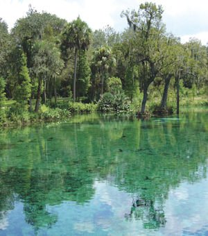 Crystal Spring Nature Preserve in Zephyrhills, Florida